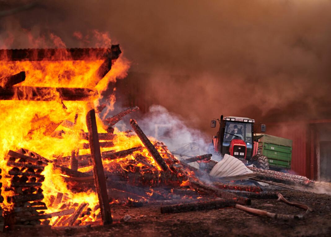 Gården Øvre Rannem i Steinkjer, der fjøset ble bygd i 1898, brant ned til grunnen 3. februar 2017. Gårdbruker Bård Rannem klarte å redde ut traktoren før flammene tok helt overhånd. Alle foto: Johan Arnt Nesgård / Trønder-Avisa