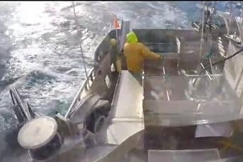 Nå kan du følge skreifiske – fisk for fisk