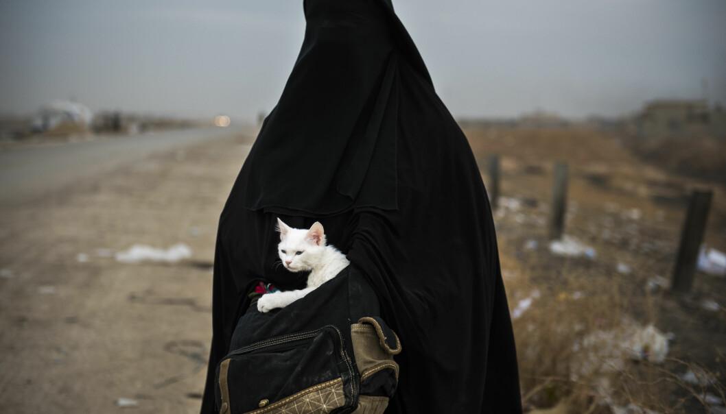 Lulu: En kvinne og hennes katt Lulu (arabisk for perle) venter på transport til en flyktningeleir I Shaqouli i Nord-Irak, for å komme seg bort fra kampene mellom IS og irakiske styrker i Mosul.