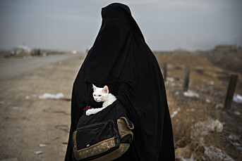 Odd R. Andersen er Årets fotojournalist