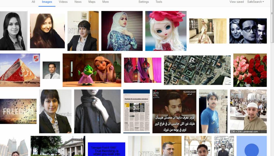 I bildesøk med Ashrafs navn viser resultatet tre bilder av advokaten som alle er vannmerket NTB Scanpix. Disse ønsker hun ikke skal være søkbare.