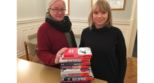 Skreddersyr bok-stipend for gravejournalister