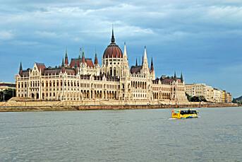 Ungarske protester mot utmerkelse til «rasistisk» journalist