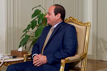 Ni journalister i Egypt i varetekt etter protester