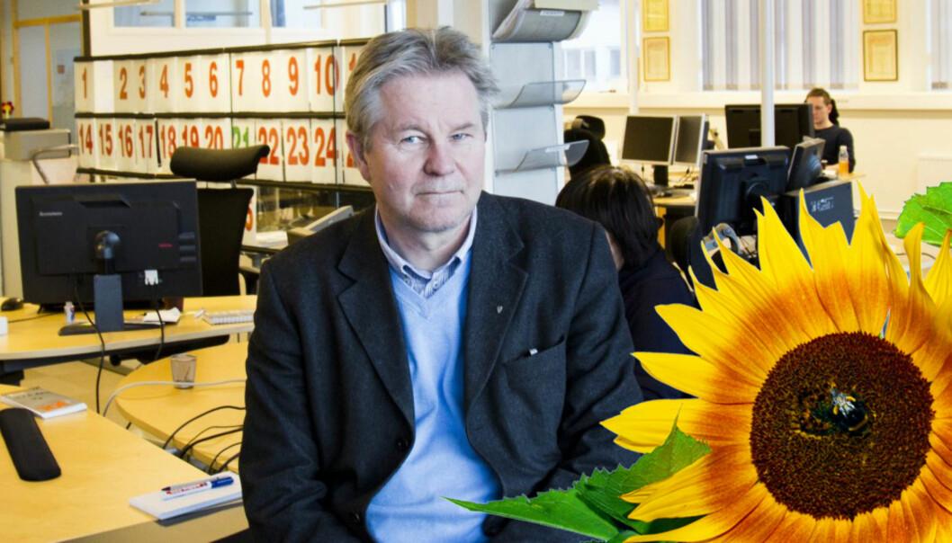 Fra Trønder-Avisas lokaler i Steinkjer leder Arve Løberg en stadig voksende mediebedrift i Nord-Trøndelag. Foto: Kathrine Geard
