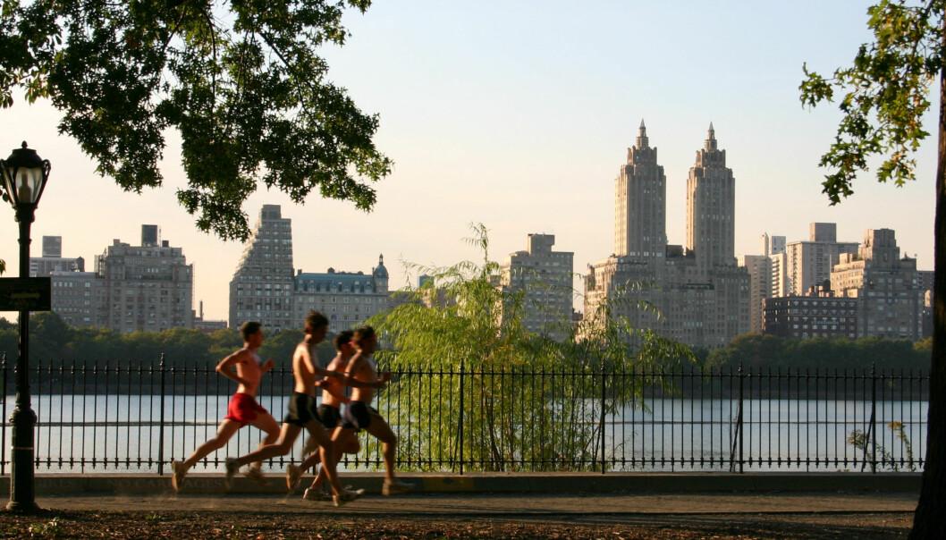 Jogging i Central Park. Foto: Patrick Gruban/Wikimedia