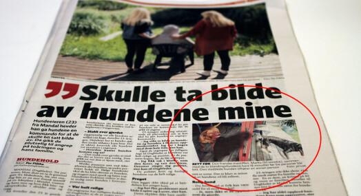 Dagbladet sladdet hund