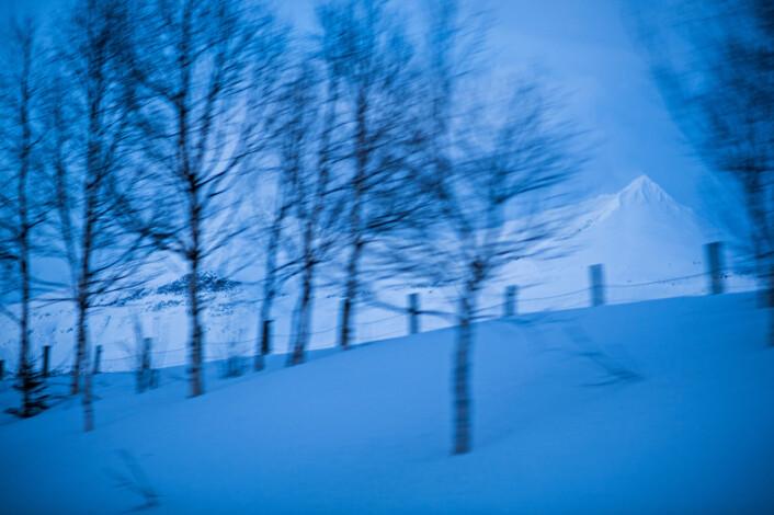 Landskap i Troms. Aasland ønsket å formidle Idas følelser. Hun var alene, på det hun kalte et «gudsforlatt» sted. Foto: Jarle Aasland, Stavanger Aftenblad