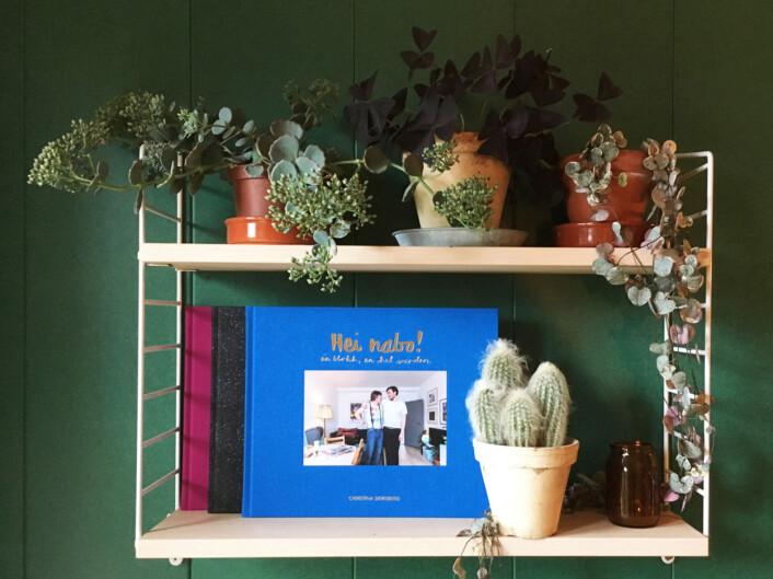 Boka valgte Christina Skreiberg å gi ut på eget forlag. Foto: Privat