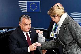Nyopprettet ungarsk mediegruppe slipper å følge konkurranseregler