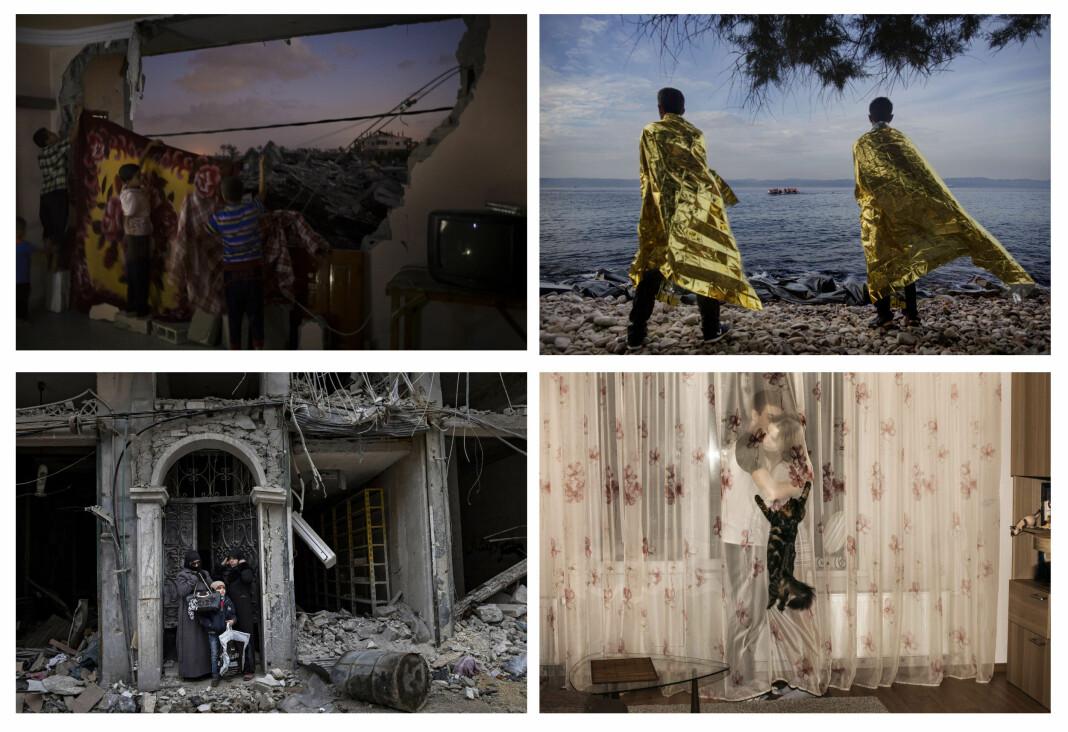 Fra øverst til venstre: Årets bilde i 2014 var tatt av Kyrre Lien, i 2015 av Espen Rasmussen, i 2016 av Aleksander Nordahl og i 2017 av Katinka Husstad. Neste vinner offentliggjøres i mars.
