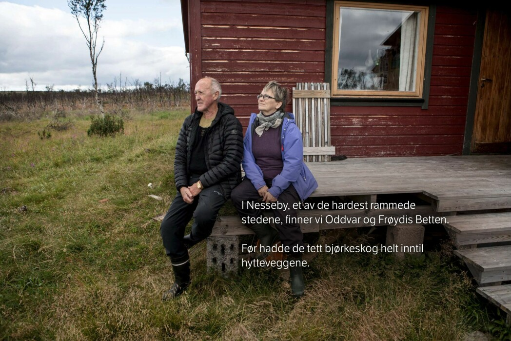 Foto: Patrick Da Silva Sæther / Skjermdump, NRK.no