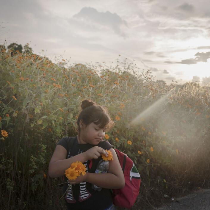 Ei jente plukker blomster under dagens vandring fra Tapanatepec til Niltepec, en distanse på 50 km.  Foto: Pieter Ten Hoopen, Agence Vu/Civilian Act