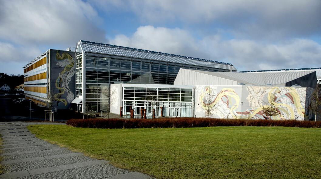 Universitetet i Stavanger har høyere poengkrav i år enn i fjor for å komme inn på journalistikkstudiet. Foto: Carina Johansen / NTB scanpix