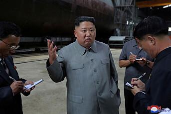 Dagbladet skjulte 16 artikler om Nord-Korea for søkemotorer