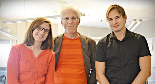 Gunn Kari Hegvik er ansatt som ny redaktør i Fosna-Folket