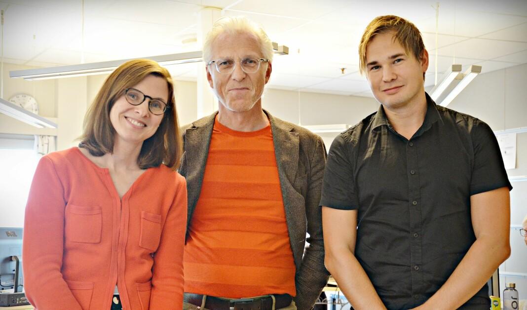 Påtroppende redaktør Gunn Kari Hegvik, styreleder Henning Johansen og avtroppende redaktør Alexander Killingberg.