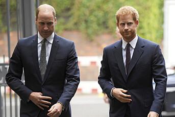 William og Harry slakter presseoppslag med påstander om forholdet deres