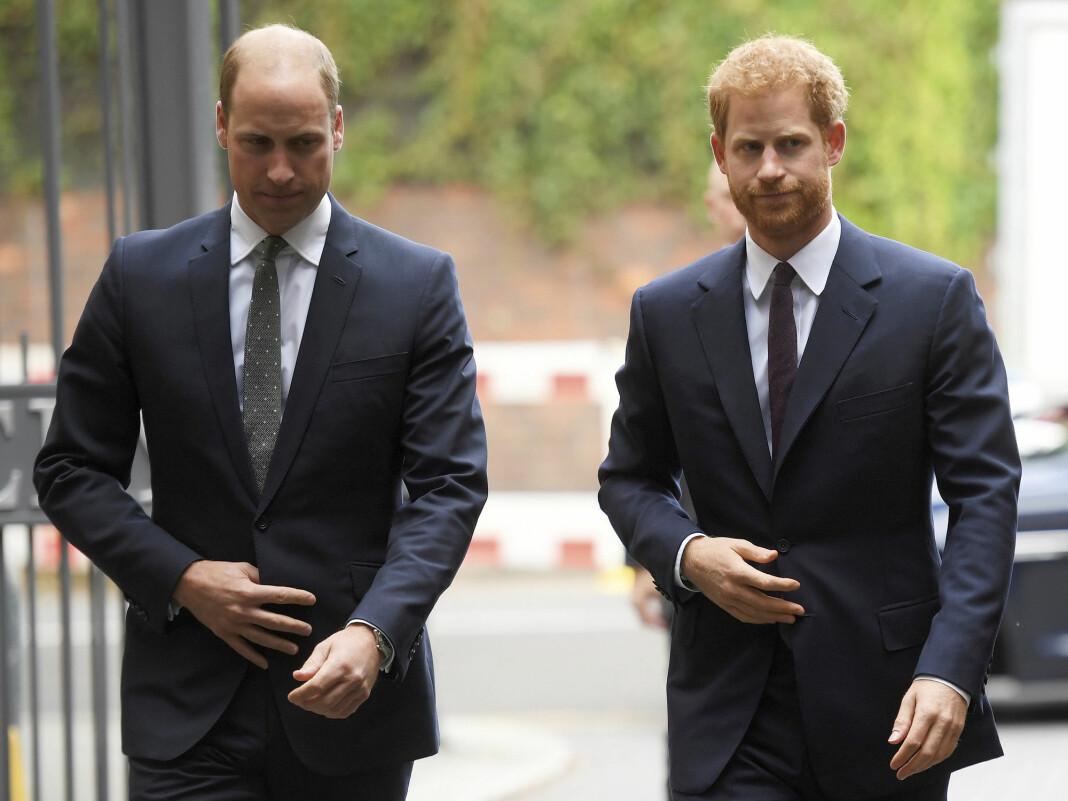 Prins William og prins Harry fotografert i september 2017.