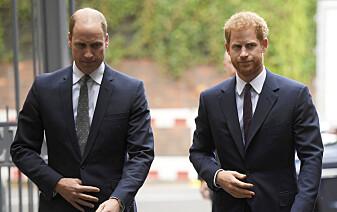 William og Harry slakter presseoppslag