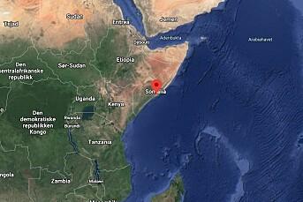 Somalisk journalist skutt og drept