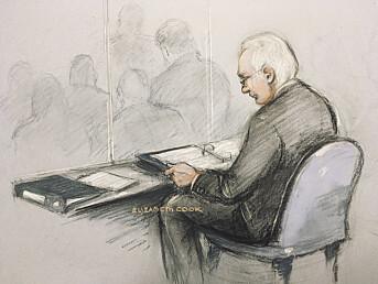 Rettstegning av Julian Assange.