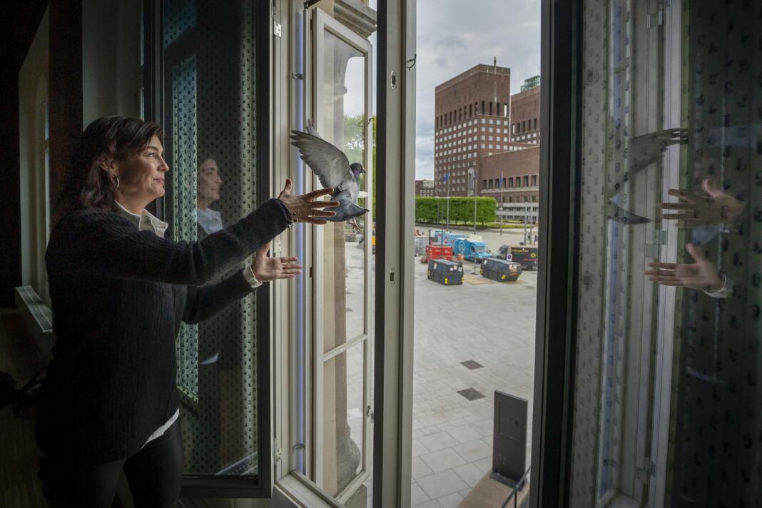 Kjersti Løken Stavrum, styreleder i Norsk Pen, slipper en fredsdue fra vinduene på Nobels Fredssenter.