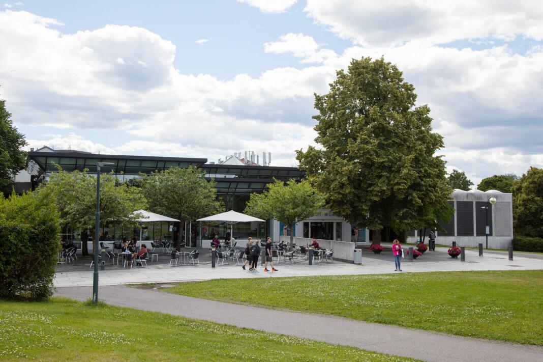 Flere Oslo-politikere frykter tomten til Munch-museet øverst til høyre, vil bli for liten for NRK.