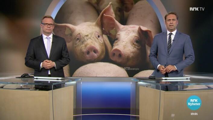 NRK-dokumentaren ble etterfulgt av en studiodebatt.