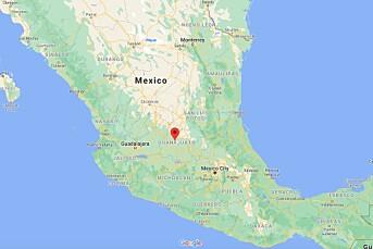 Mexicansk journalist drept på jobb