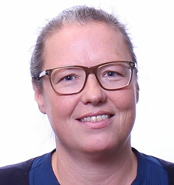 Psykologiprofessor ved Politihøyskolen Brita Bjørkelo.