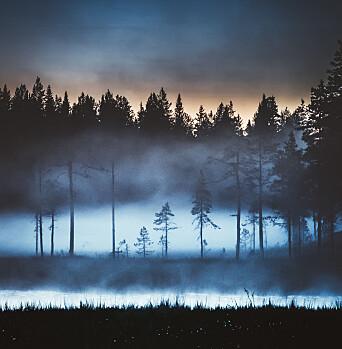 Risberg bor midt i skogen i Hedmark, og tilbringer mye tid i naturen.