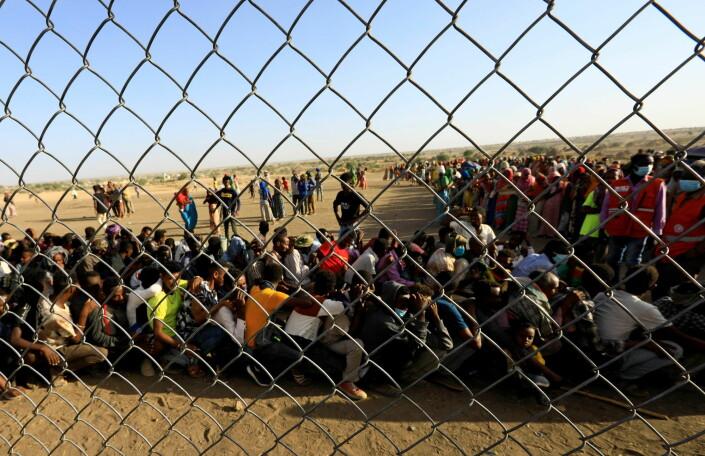 Flyktninger fra Tigray-provisen står i kø for få mat i nabolandet Sudan.