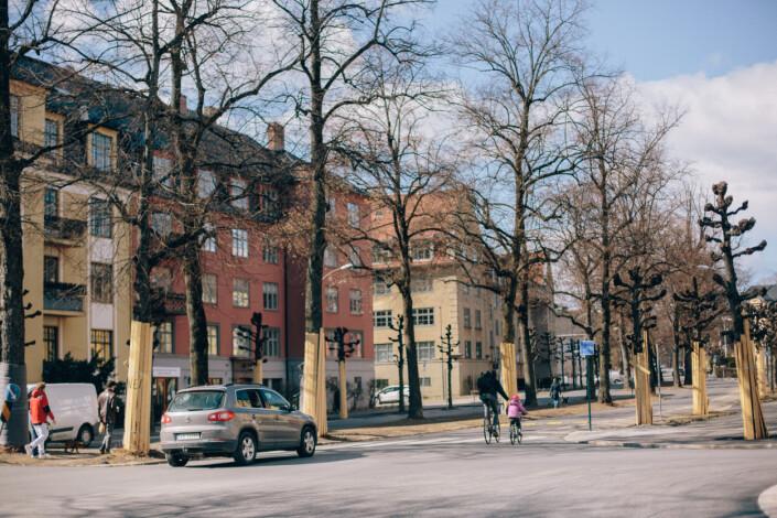 Parkeringsplassene er borte til fordel for sykkelfelt i Gyldenløves gate.