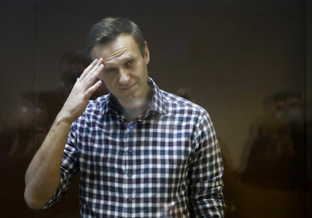 Fengslingen av regimekritikeren Aleksej Navalnyj, som returnerte til Russland fra Tyskland i januar, resulterte i protester over hele Russland.