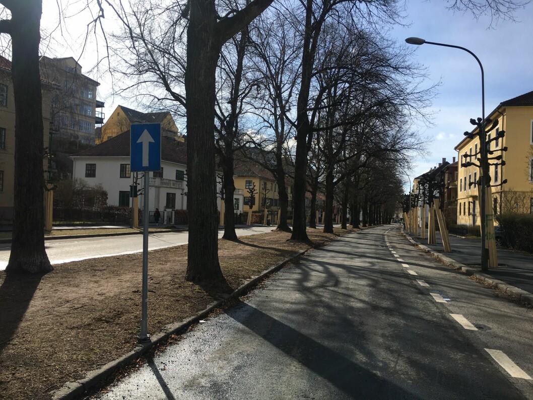 Ingalill Sandal reagerer på en harselerende tone i Journalistens artikkel om Gyldenløves gate.