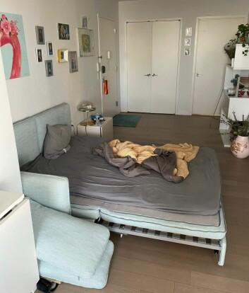 Det er på denne sovesofaen jeg har sovet flere ganger i vinter når karantene har krevd det. Dette bildet er tatt i januar i år, da kona ble smittet av korona. Soveromsdøren er til høyre på bildet.