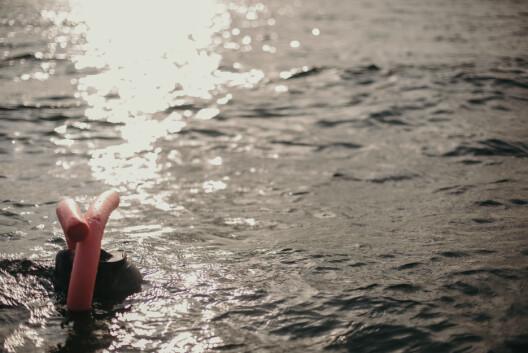 Fridykkerne gjør seg klare for å stige ned i det åtte grader kalde vannet
