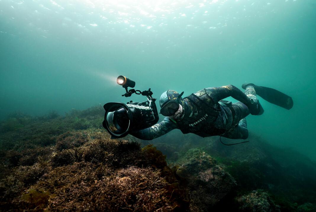 Fridykker og fotograf Aleksander Nordahl på jobb under vann.