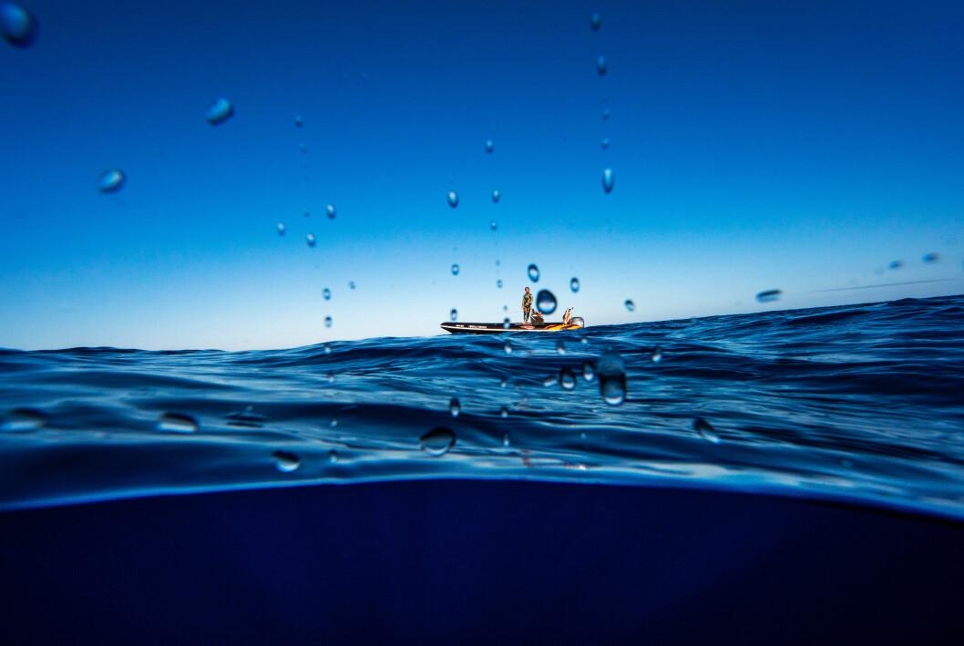 Aleksander Nordahl har hatt flere utstillinger med bilder tatt i og under vann.