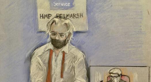 Delseier for USA i Assange-saken
