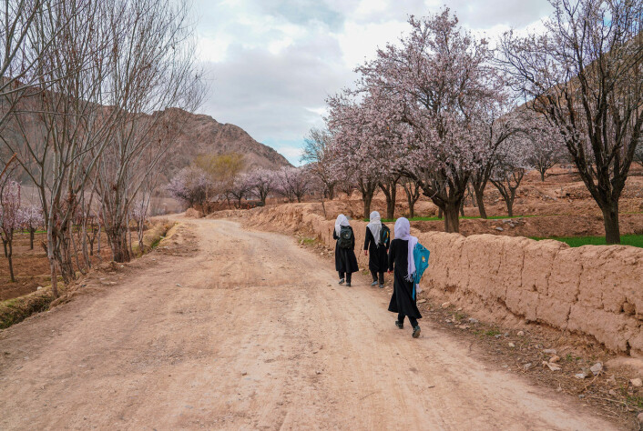 Afghanske jenter på vei til skolen i Sayghandistriktet i Bamiyanprovinsen. Bildet er tatt i juni 2021.